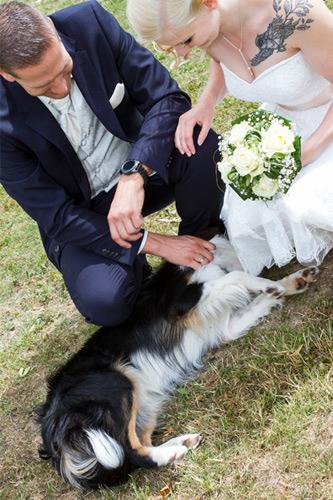 hundefotograf hannover hundefotografie hunde fotoshooting-20
