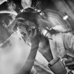 hochzeitsfotograf braunschweig preise hochzeitsreportage braunschweig preise hochzeitsfotograf preisliste erfahrungen preis bewertung hochzeitsfotografin günstig bester