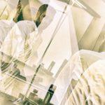 hochzeitsfotograf hildesheim preise hochzeitsreportage hildesheim preise hochzeitsfotograf preisliste erfahrungen preis bewertung hochzeitsbilder günstig bester 041